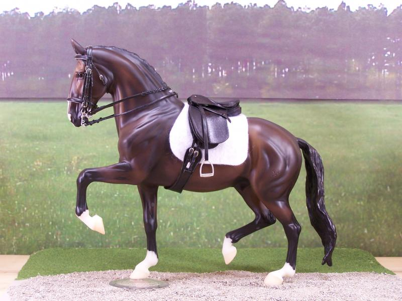 Upper level Dressage set
